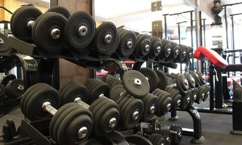The Gym Model Town