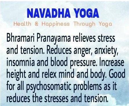 Navadha Yoga Center