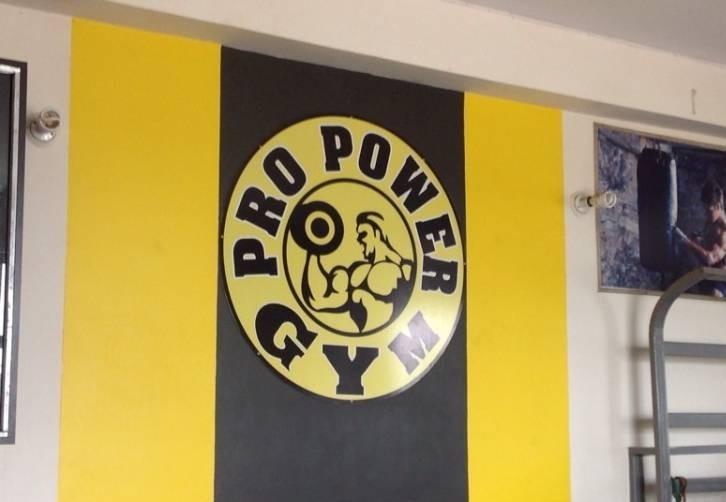 Pro Power Gym